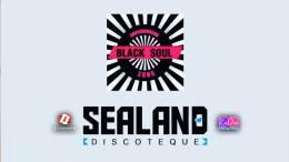 Quelli-della-Movida....-Sealand-Artists-6^-puntata
