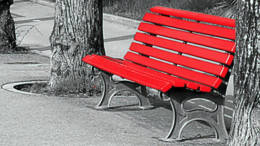 25-panchina-rossa